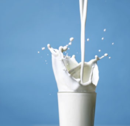 Asthma Myths And Facts - Cow's Milk And Allergy In Children2