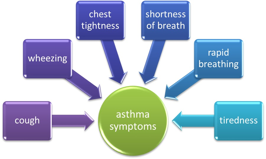 asthma the causes and symptoms Symptoms of asthma in pets include wheezing, labored breathing, and a dry hacking cough cats can have very serious asthma with no or very subtle asthma is caused by inflammation of the airways in the lungs, so reducing inflammation across the board, including from dietary sources, is important.